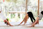 Three people enjoying yoga at YogaRosa